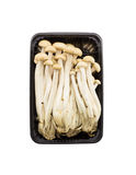 Top view Brown beech mushrooms, Shimeji mushroom in  isolated on Royalty Free Stock Photo