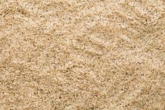 Top view brown rice texture close up stock images