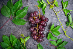 Top view bunch of red grapes and green leaves with water drops on the dark concrete background. Selective focus Royalty Free Stock Photo
