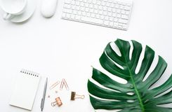 Top view of business desk table with monstera leaves and mock up Royalty Free Stock Images