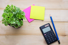 Top view calculator,post it note,pencil and some plant put on wo. Oden background Royalty Free Stock Images