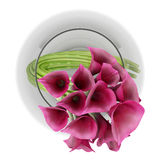 Top view of calla lilies in glass vase isolated on white Stock Photography