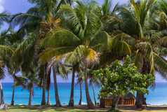 Top view of the caribbean ocean in Cuba with palms and beach bar - Serie Kuba 2016 Reportage Royalty Free Stock Image