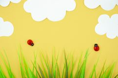 Top view cartoon ladybug models with grass and paper clouds. Flat lay with summer minimal concept.  stock images