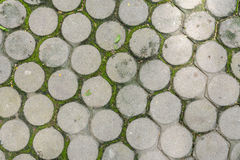 Top view of cement block floor with green moss Royalty Free Stock Image