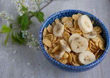 Top view of the cereal with a banana Royalty Free Stock Photo