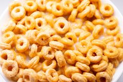 Top view cereal rings with milk. Close up stock photography
