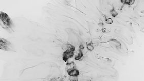 Top view, the chaotic falling of black paint droplets. Abstract. Background stock video
