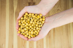 Top view of cheakpeas in hands Royalty Free Stock Photography