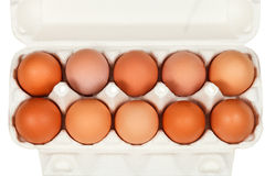 Top view of chicken eggs in cardboard box Royalty Free Stock Images