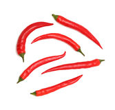 Top view of chili peppers (isolated) Stock Photo