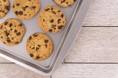 Top view of chocolate chip cookies on a baking sheet, white wooden plank in background. Copy space for your text royalty free stock photography