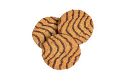 Top view chocolate oatmeal cookies Royalty Free Stock Images