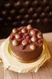 Top view of a chocolate tiramisu cake with raspberries, black currants, sprinkled with cocoa on a brown wooden. Appetizing chocolate tiramisu cake sprinkled with Stock Photos
