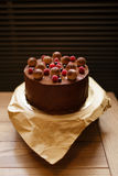 Top view of a chocolate tiramisu cake with raspberries, black currants, sprinkled with cocoa on a brown wooden. Appetizing chocolate tiramisu cake sprinkled with Royalty Free Stock Photo