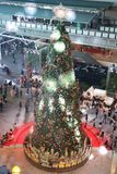 Big Christmas tree from the top view royalty free stock photos
