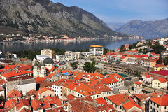 Top view of city centre of Kotor Stock Images