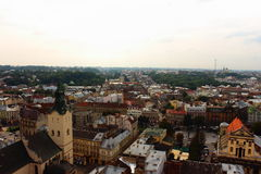 Top view of the city Lviv stock images