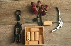 Top view, close  up of a variety of cork pullers in a row with a cork on the chrome wine bottle opener. On the screw, a group of red, ripe wine grapes and a Stock Image