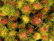Top view, Closed up heap of rambutans surface in the bucket. The sweet and tasty tropical fruit in Thailand Royalty Free Stock Photo