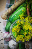 Top view closeup jar pickles other ingredients pickling Stock Photography