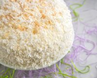 Top View of Coconut Cake for Easter. Coconut cake with toasted coconut on top to share with family on the Easter holiday Stock Image