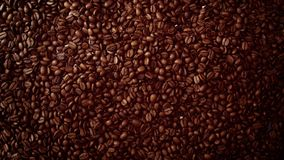 Top view of coffe beans Background full of cofe beans. Studio shoot Royalty Free Stock Images