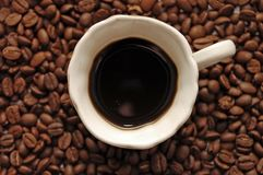 The top view on coffee grains with coffee Royalty Free Stock Photos
