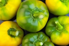 Top view of color paprika.Yellow-green bell peppers on dark background. Stock Photos