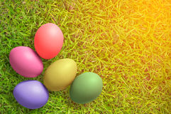 Top view of Colorful Easter Eggs on grass background Royalty Free Stock Photography