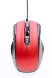 Top view of computer mouse Royalty Free Stock Image