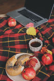 Top view of cozy autumn morning at home. Breakfast with laptop, cup of tea and bagel with apples on woolen plaid blanket Royalty Free Stock Photos