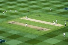 Top View of Cricket pitch at MCG stock photos
