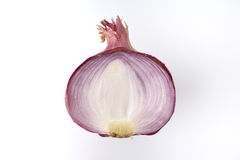 Top View of Cross Section of Onion Royalty Free Stock Photos