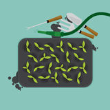 Top View Of Cultivate Tray With Gardening Equipment. Top View Of Cultivate Tray With Gardening Equipment Vector Illustration Stock Photography