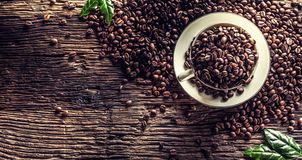 Top of view cup full of coffee beans on rustic oak table royalty free stock photo