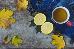 Top view of a cup of tea, blue scarf, sliced lemon and leaves on wooden background stock photo