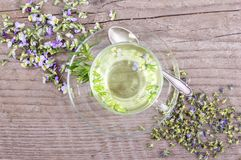 Herbal tea with heartsease. Top view of a cup of tea with fresh and dried flowers from field pansy  on a wooden background Royalty Free Stock Photo