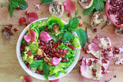 Top view of Curly endive salad with pomegranate, nuts... Royalty Free Stock Photos