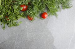 Top view of decorative board made with dill, cilantro and fresh tomatoes on grey kitchen table top.Empty space stock image