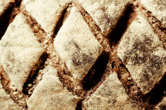 Top view of a decorative loaf of bread Stock Images