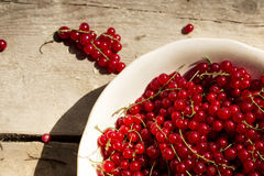 Top View Detail on a bowl full of red currant on a wooden table royalty free stock images