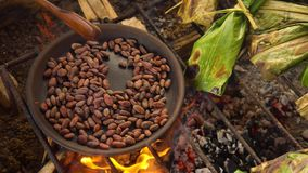 Top View Detail Shot Of Handmade Roasting Of Cocoa Beans. In Ecuador stock video footage