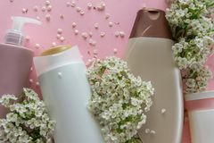 Top view of different hygienic products and flowers on fresh pink background. Wellness beauty treatment. Organic health care products royalty free stock images