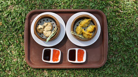 Top view of dim sum on green grass Royalty Free Stock Photo