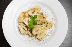 Top of view of dish of italian swivels pasta with porcini mushrooms and sauce bechamel with pepper Stock Photography