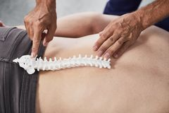 Constructions of lumbosacral spine on example of plastic sample stock photo