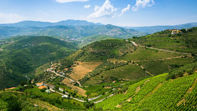 Top view of Douro Valley, the vineyards are on a hills, Portugal. Nature. Stock Image