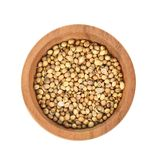 Top view of dried coriander seeds in the wooden plate white bac royalty free stock photography