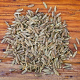 Top view of dried cumin seeds Stock Image